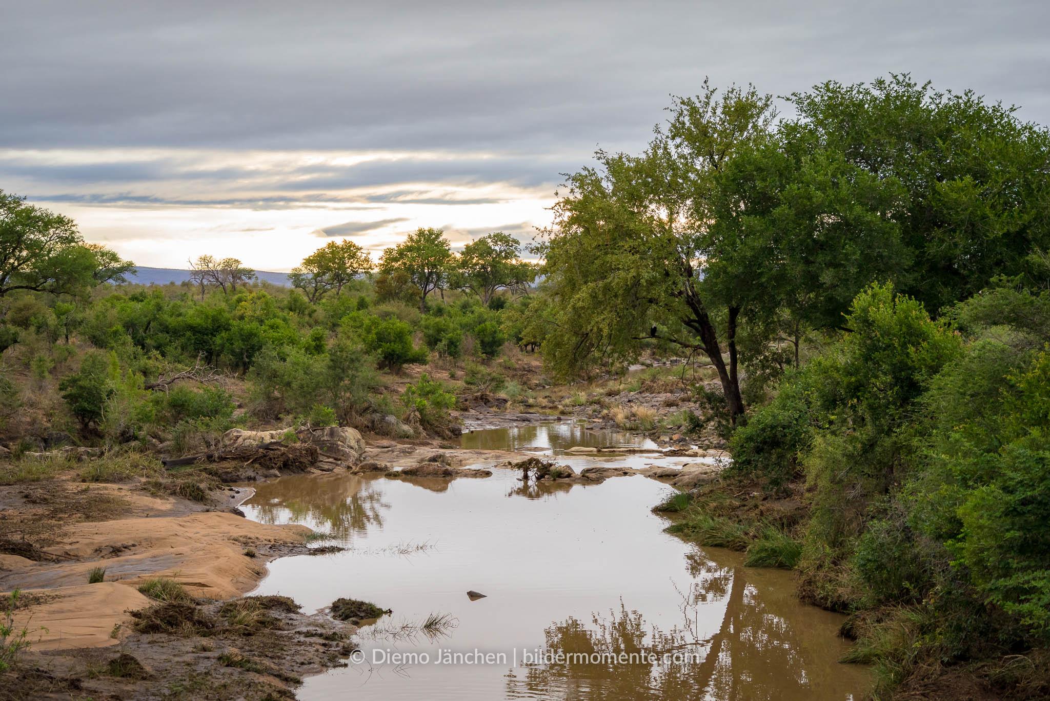 Flußlauf im Kruger Nationalpark