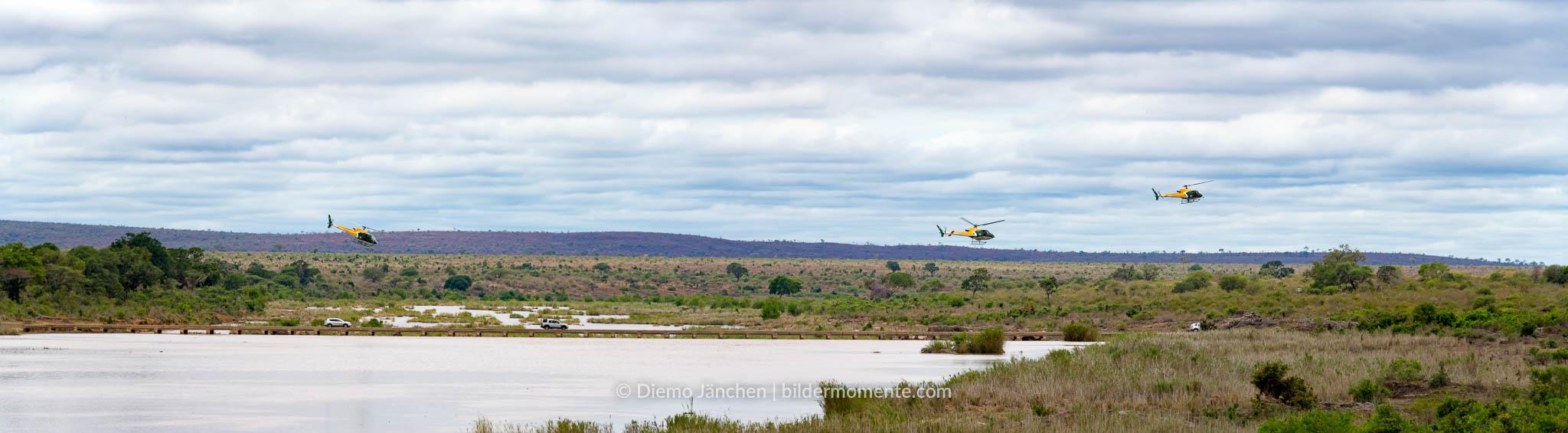 Helikopter im Kruger