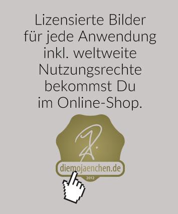 BM-Onlineshop